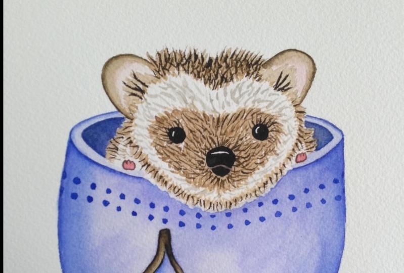 Hedgehog in cup