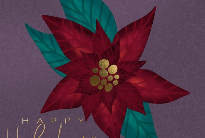 Digital Painting of a Poinsettia