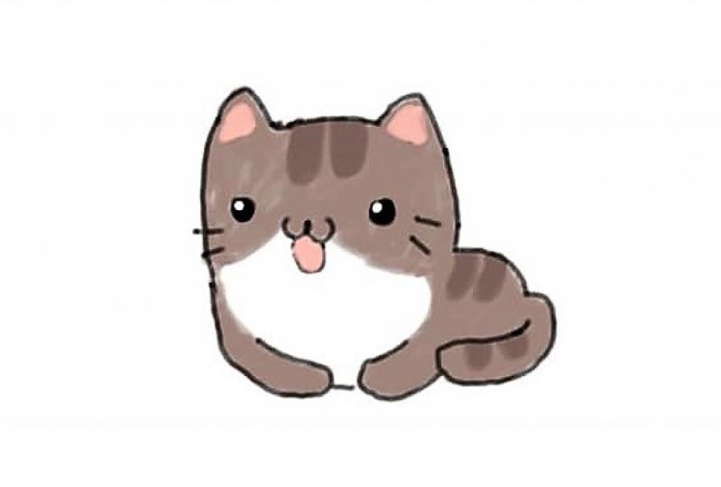 Cute Kawaii Cartoon Cat
