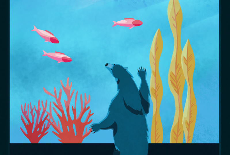 Polar bear at an aquarium