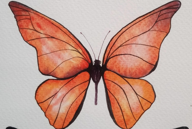 Learn to Paint Realistic Watercolor Butterflies