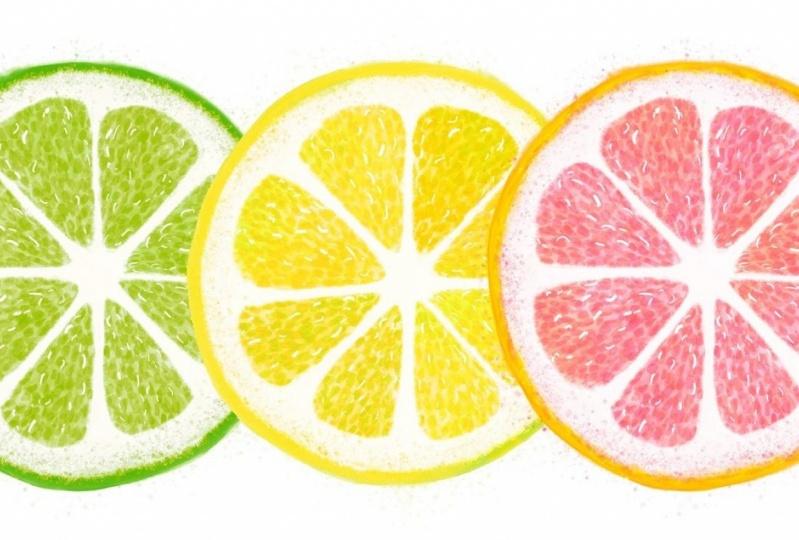 citrus illustrations