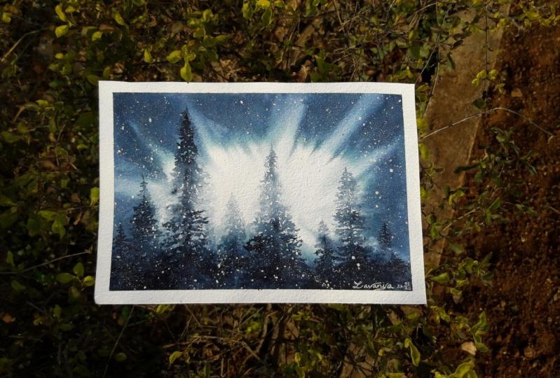Backlit Pines Landscape