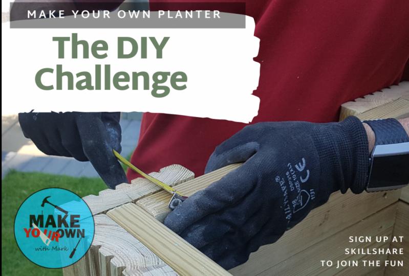 The DIY Challenge