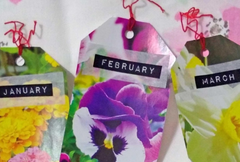 monthly dividers