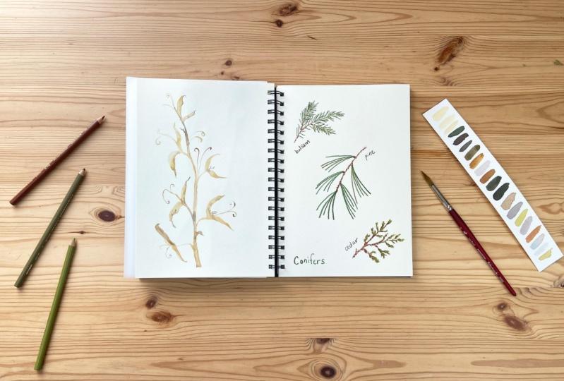 Sample Sketchbook Pages