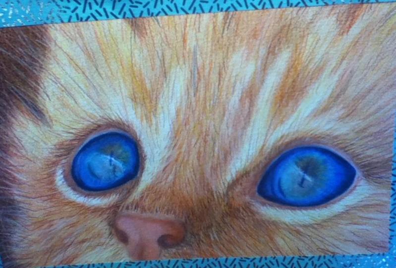 Kirsty's Kitty Portrait Class