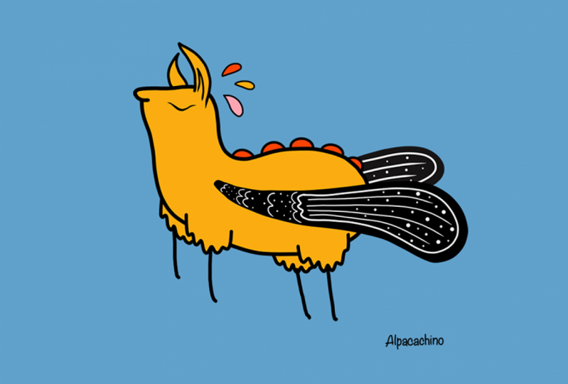 Alpacachino - Flier Alpaca, Happy Teen Dreamer.