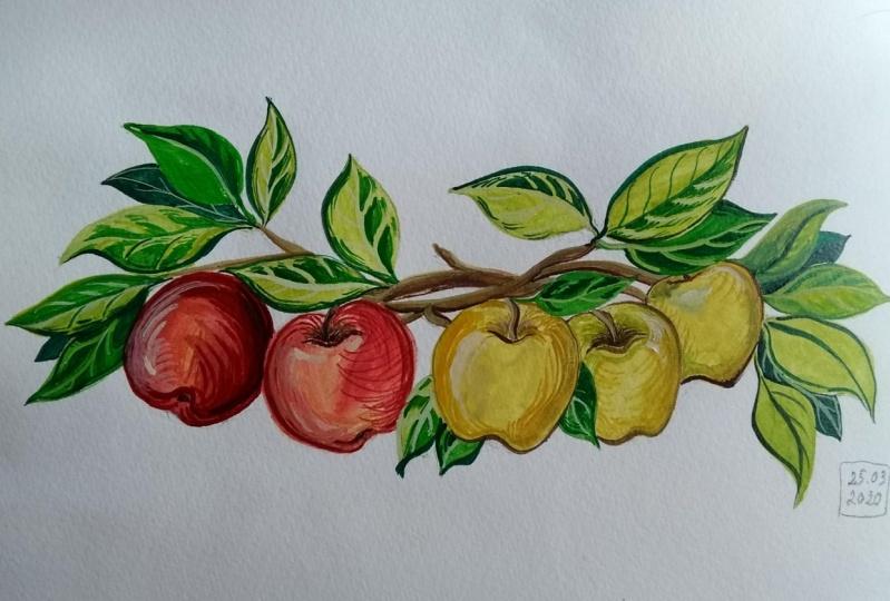 Gouache Apples
