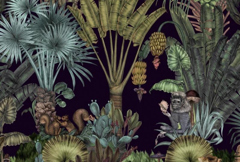 Botanical World - Colour of the Background