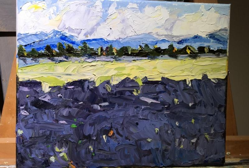 Lavender Fields Attempt