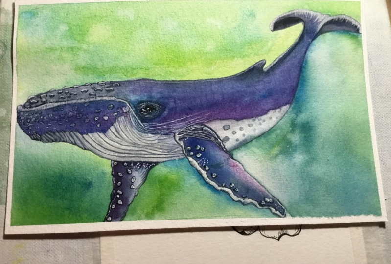 My whale. Loved the class