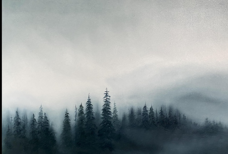 My misty forest