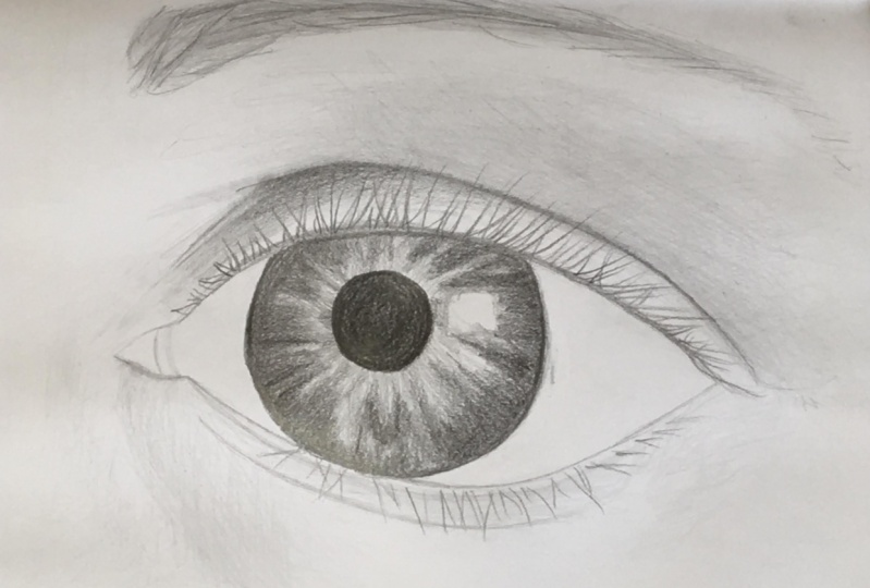 Drawing the Eye Exercise