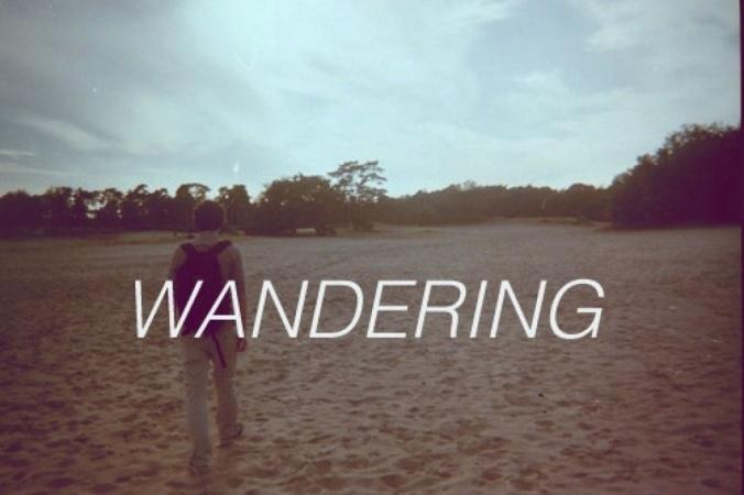 World Wanderer