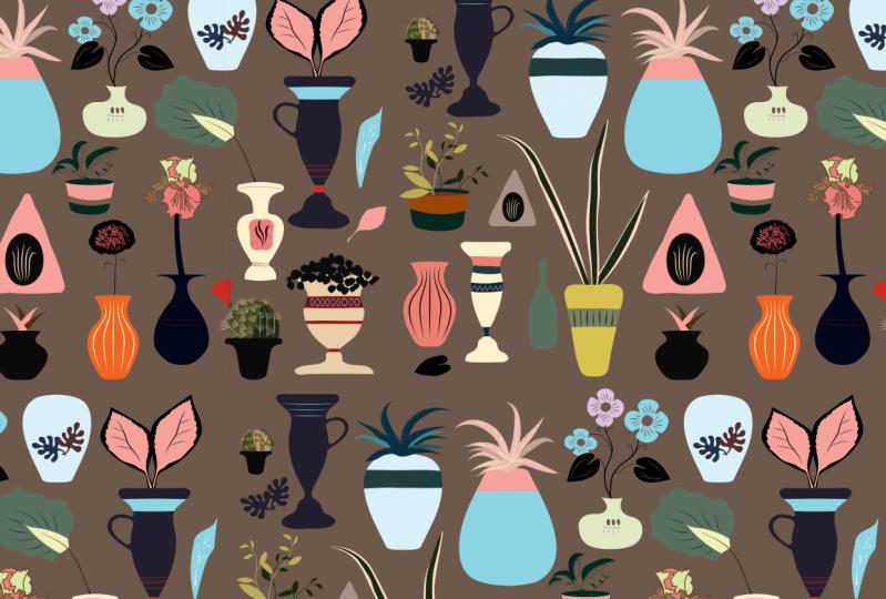 vases, cactus and houseplants