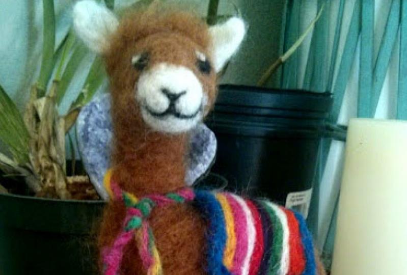 Alpaca All Dressed Up