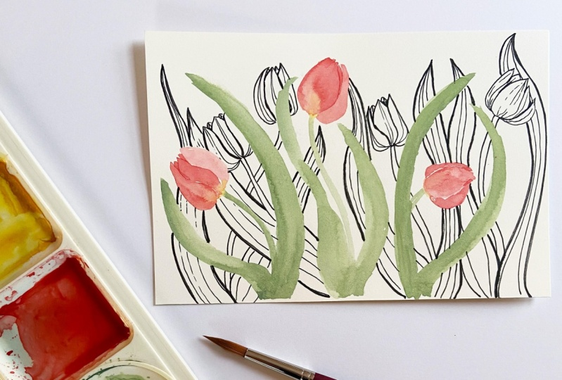 Watercolor and Pen Tulips -- Example Sketch
