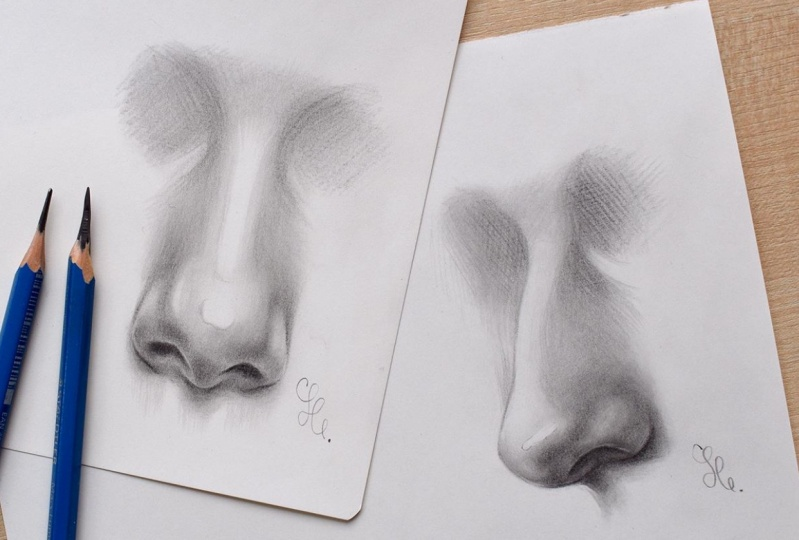 My Noses