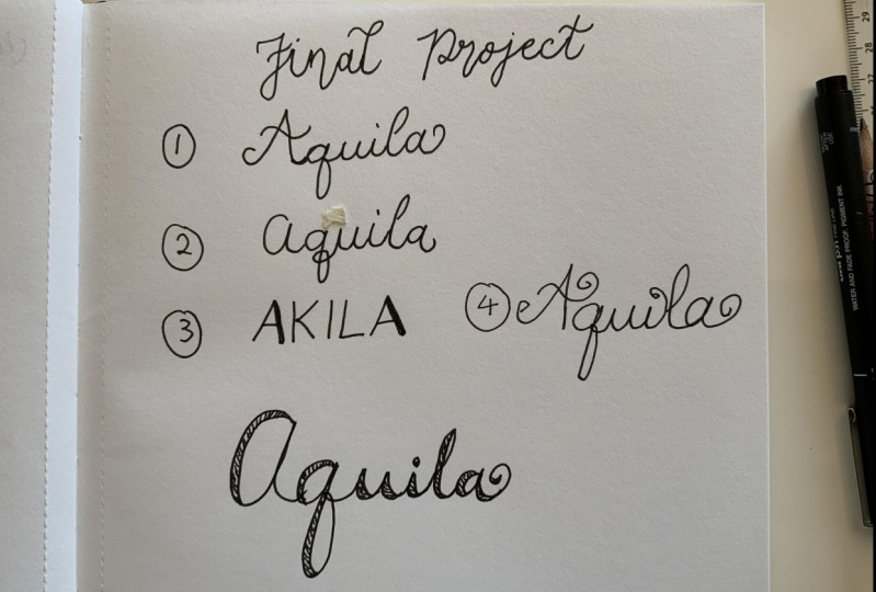 Aquila's final project