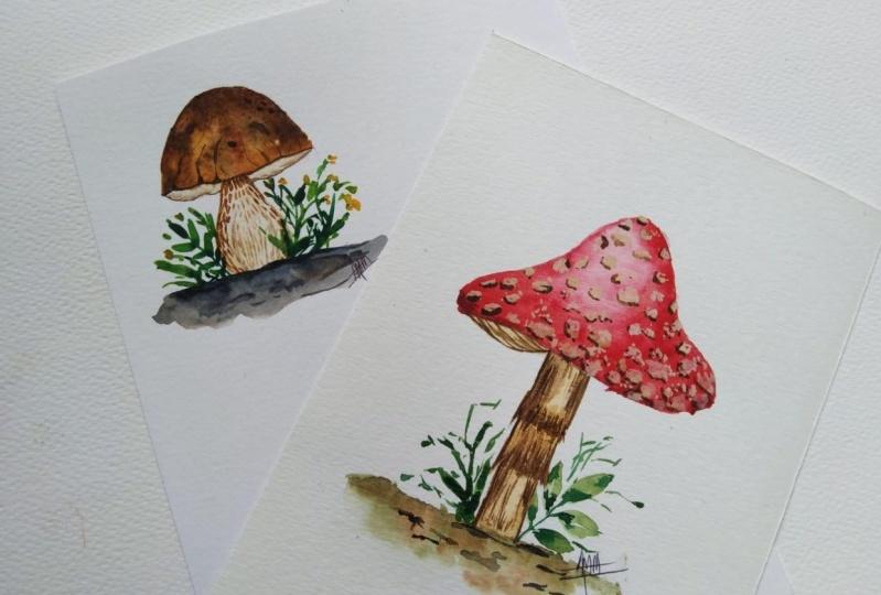 Mushrooms Mushrooms Everywhere...