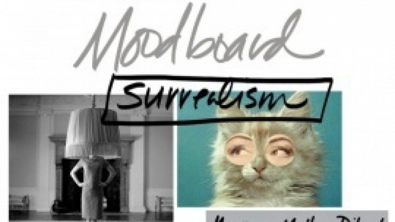 Moodboard for Shy Portrait