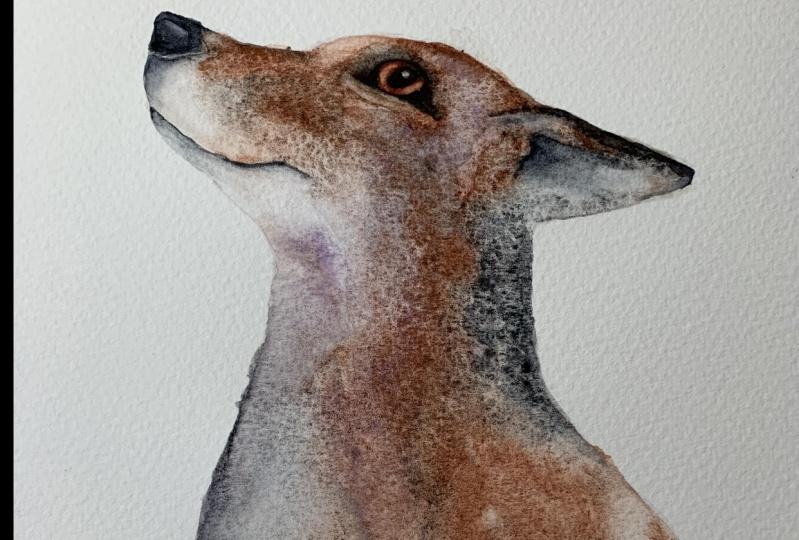 The Fabulous Mr. Fox