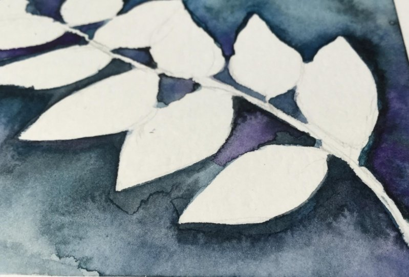 Botanicals in watercolour