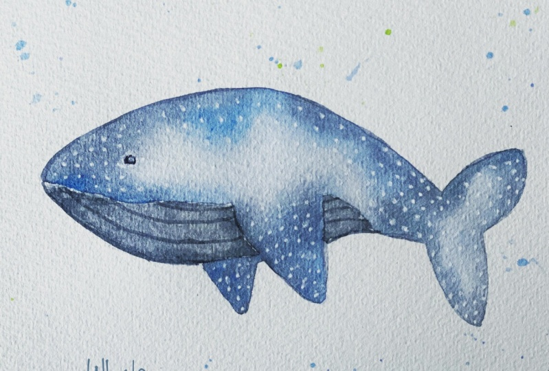 Whimsical Whale Shark