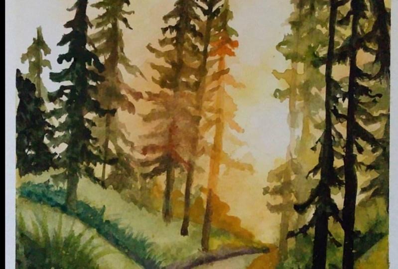 Sunset in the woods. Carmen Davalos