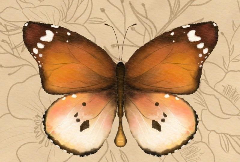 Le Papilon