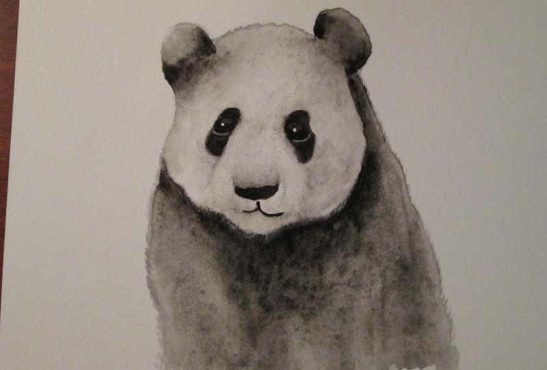 Panda with Jane Davies