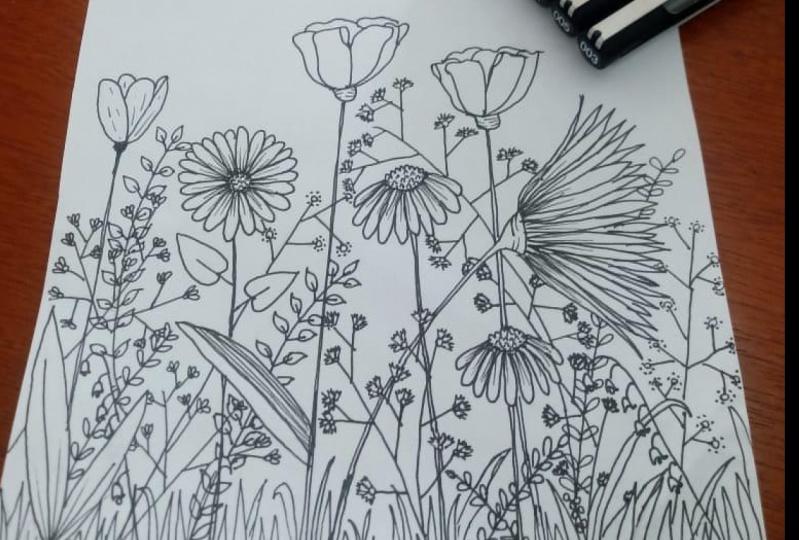 Meu jardim/ My garden