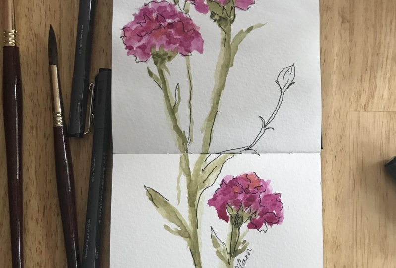 Watercolor Carnations and Ink