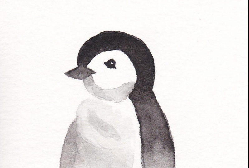Who does not love Penguins?