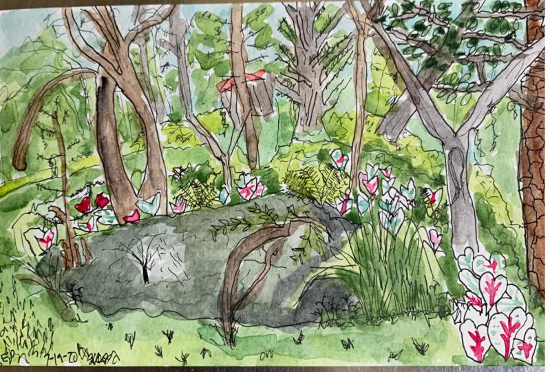 Greenfield Lake Park Onsite Sketch