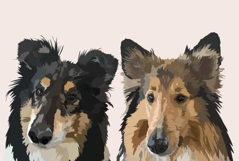 Doggos x2 !