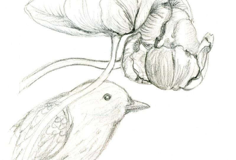 Tulips and Blackbird