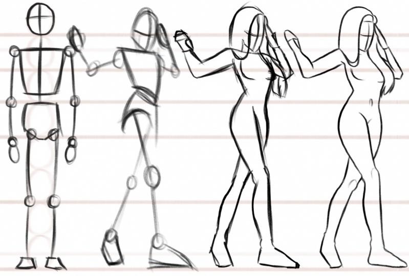 Female body anatomy.