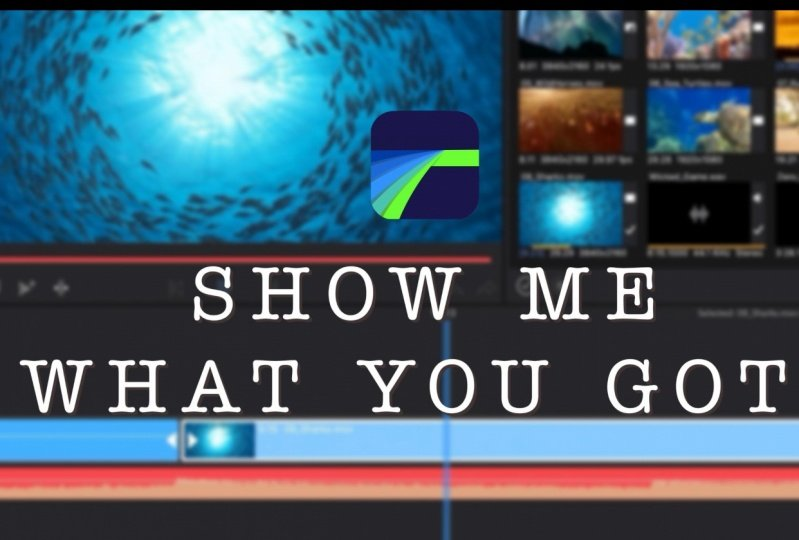 SHOW ME WHAT YOU GOT!