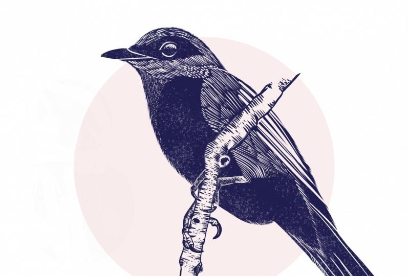 Linocut Bird