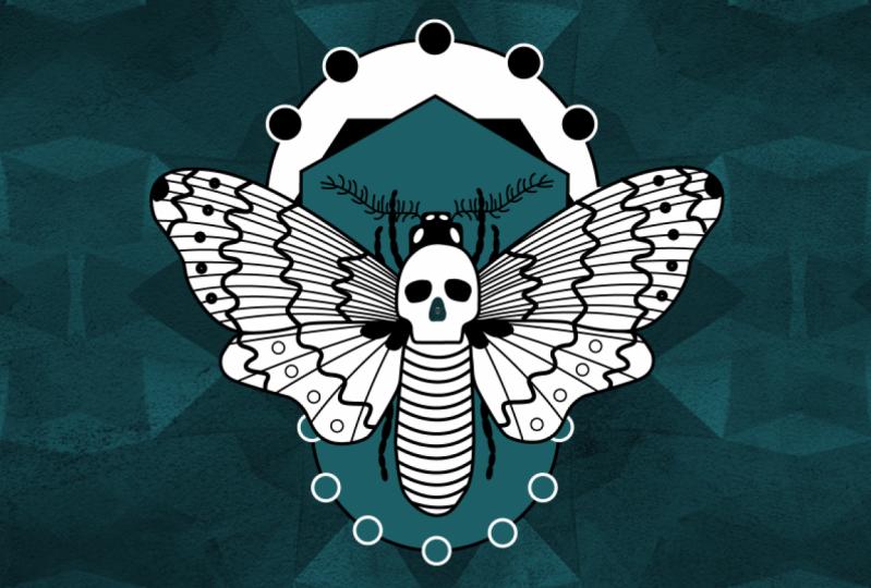 Moth infinite loop