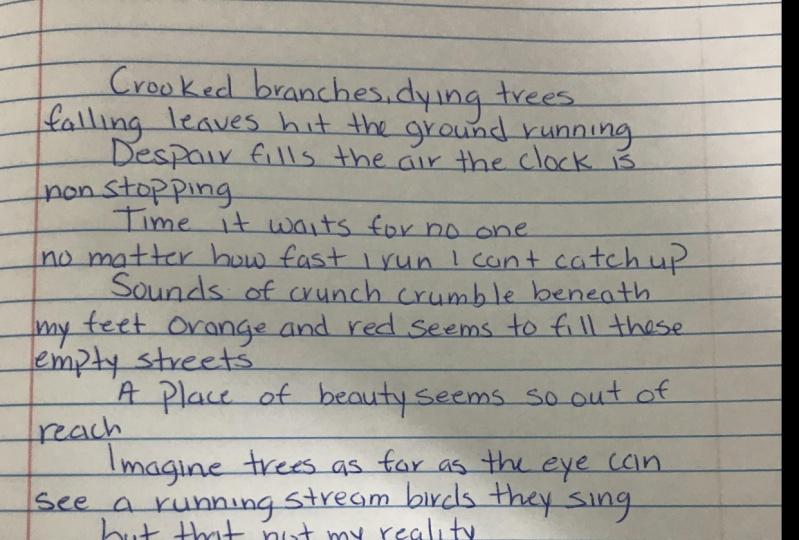 novice poetry writer