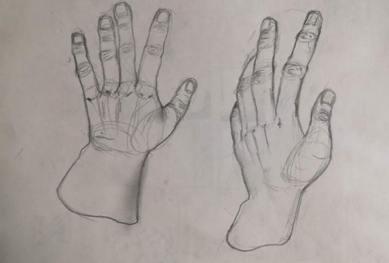 It helped me draw hands much easier.