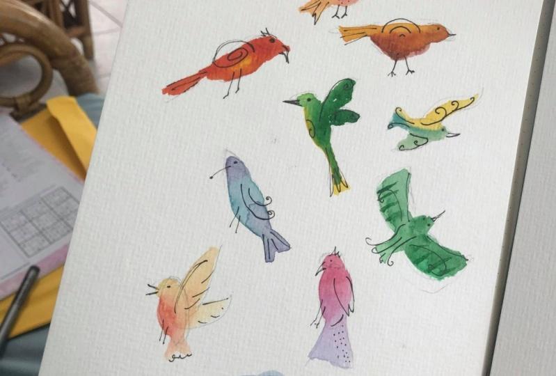 Quirky Bird Fun !