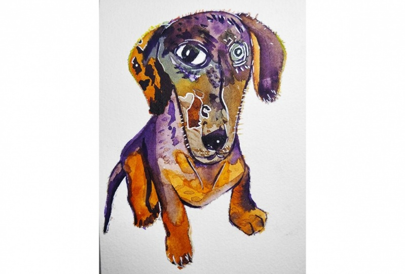 Quirky Sausage Dog