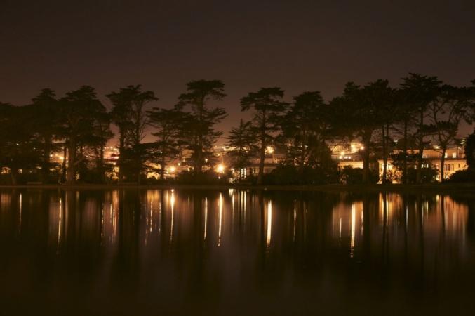 Hoa's Night Photos