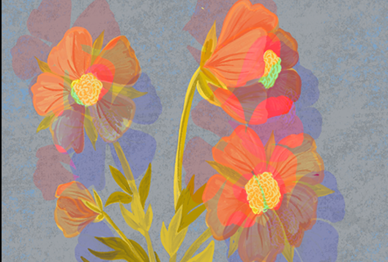 Flowers with Chromatic Aberration