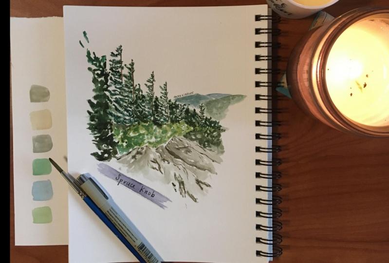 Spruce knob landscape :)