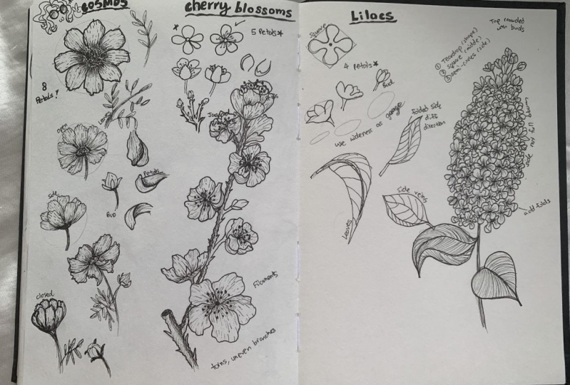 Ink Pen Flowers